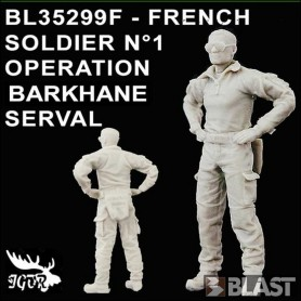 BL35299F - FRENCH SOLDIER N1 OPERATION BARKHANE / SERVAL